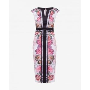 Ted Baker Painted Posie Sheath Dress